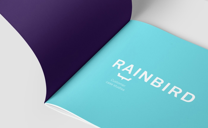 Brochure design for artificial intelligence firm, Rainbird.