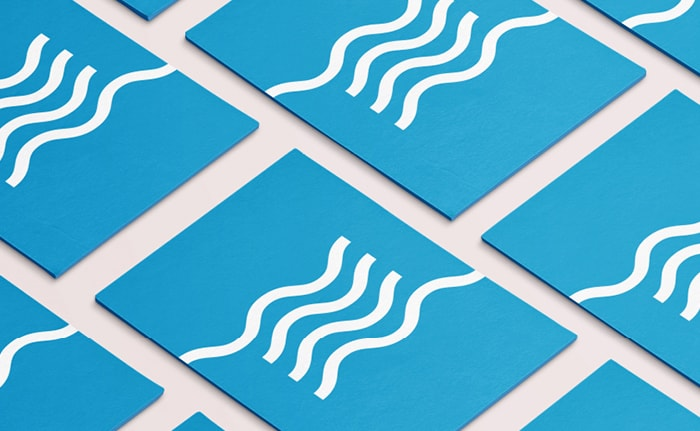Business cards for The Wash and North Norfolk Marine Partnership.